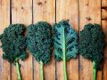 Kale: From Garnish to Superfood