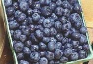Bodacious Blueberries Have Hidden Benefits for Health Nuts