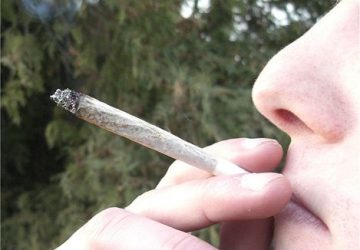 Marijuana Use Reaches 30-year High