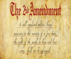 Repealing Second Amendment Is Like Screaming at the Sky