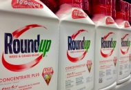 Glyphosate Could Lead to Half of Children Having Autism by 2025
