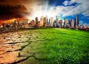Why Climate Change Arguments Won't Change the Climate