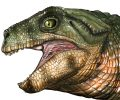 New Research Shows Crocodiles Were Once Vegetarians