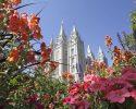 Mormon Church Warns No Green Tea, Vaping or Drinks Ending in ccino: