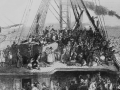 Your Illegal Ancestors