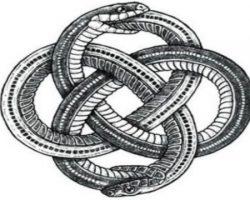 worm ourborus