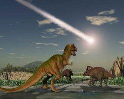 A new mass extinction…!