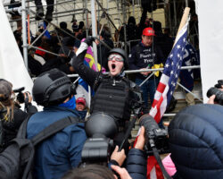 Holy cow – I caused a riot